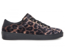 Duffy Leopard Sneakers